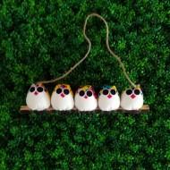 5 petites chouettes Coccinelle