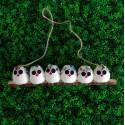 6 petites chouettes Hibou