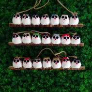 7 petites chouettes