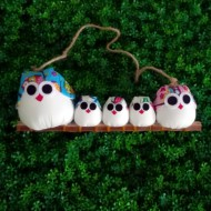 Famille 5 Chouettes  hibou
