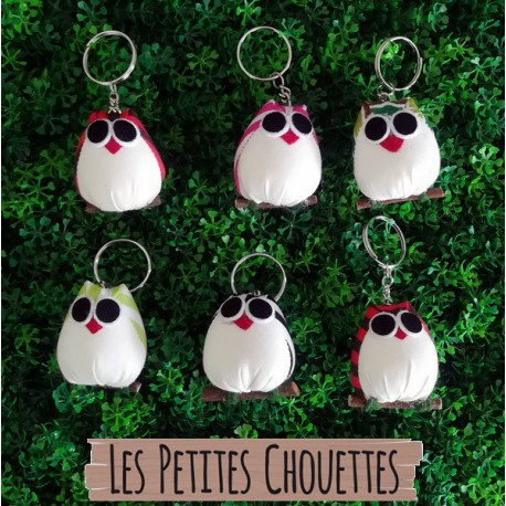 6 portes clefs chouettes rayer